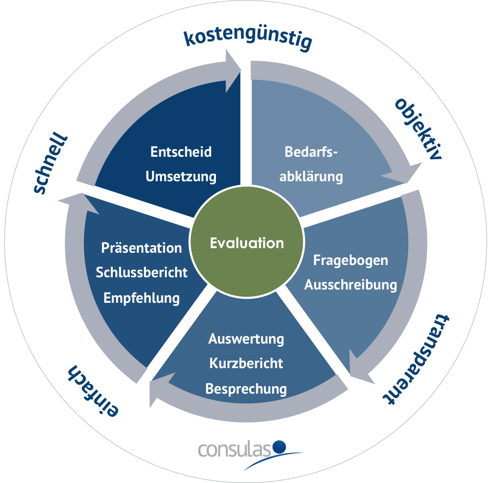 Professionelle Evaluation - der Ablauf